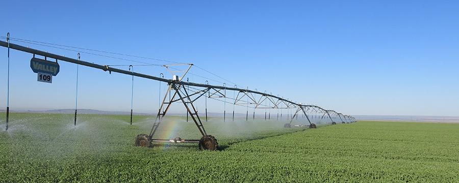 banner-irrigation.jpg